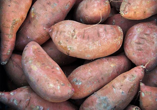červené brambory